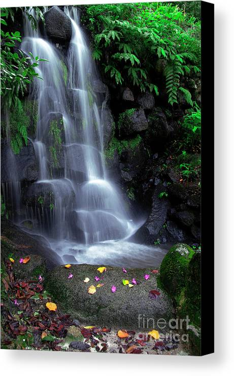 Autumn Canvas Print featuring the photograph Waterfall by Carlos Caetano
