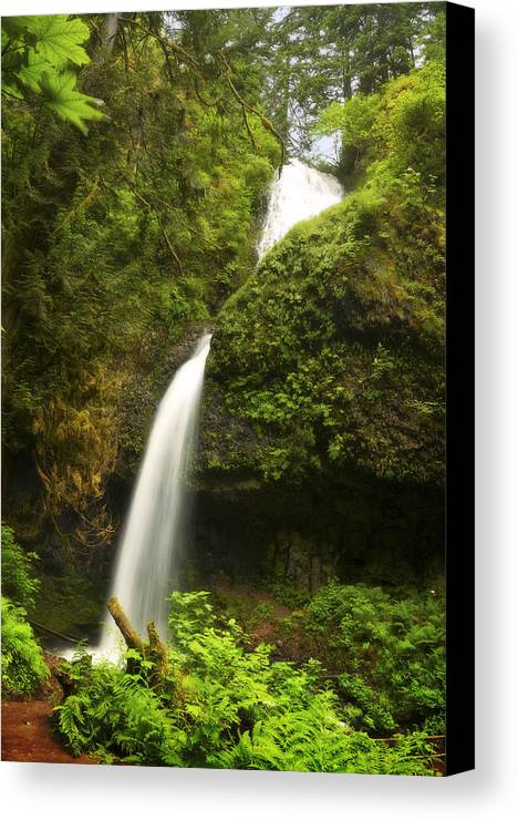 Water Canvas Print featuring the photograph Upper Latourell by Jon Ares