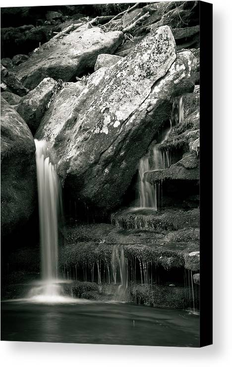 Waterfalls Canvas Print featuring the photograph Hidden In The Forest by Iris Greenwell