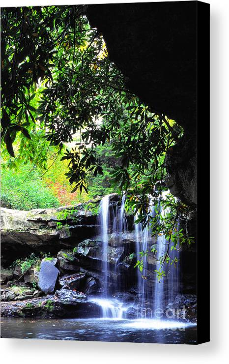 Mccoy Falls Canvas Print featuring the photograph Waterfall And Rhododendron by Thomas R Fletcher