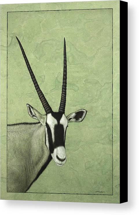 Gemsbok Canvas Print featuring the painting Gemsbok by James W Johnson