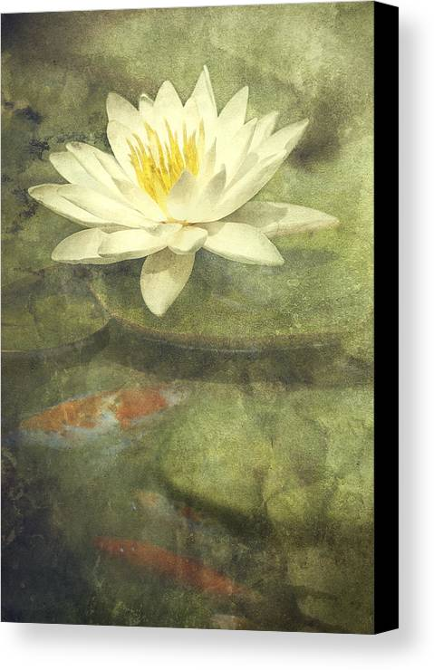 Water Lily Canvas Print featuring the photograph Water Lily by Scott Norris