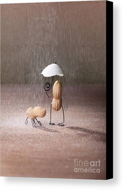 Peanut Canvas Print featuring the photograph Bad Weather 02 by Nailia Schwarz