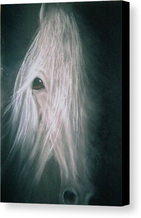 Horse Canvas Print featuring the painting If Wishes Were Horses by Diana Cochran