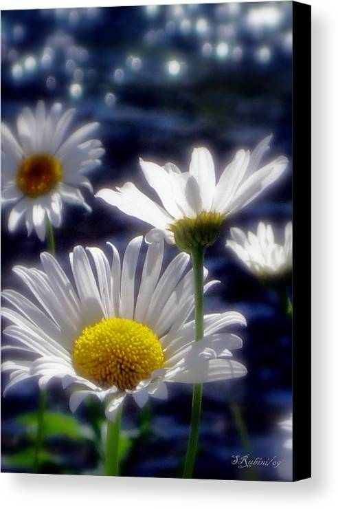 Canvas Print featuring the photograph River Weed by Sandy Rubini