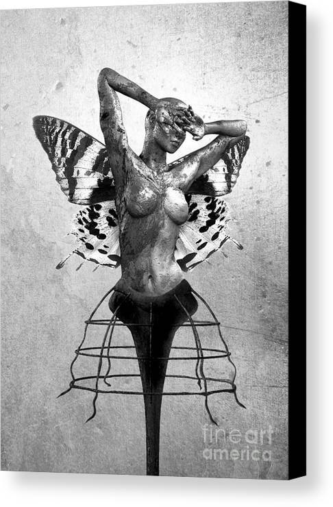 Photodream Canvas Print featuring the digital art Scream Of A Butterfly II by Jacky Gerritsen