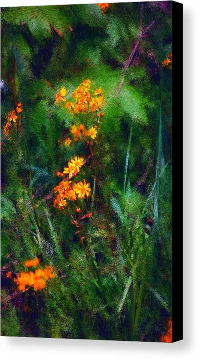 Digital Photography Canvas Print featuring the digital art Flowers In The Woods At The Haciendia by David Lane