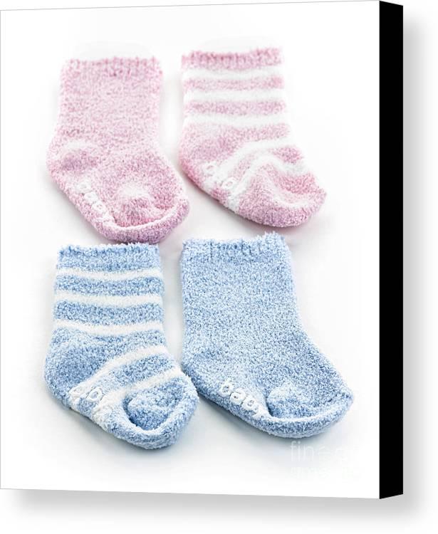 Socks Canvas Print featuring the photograph Baby Socks by Elena Elisseeva