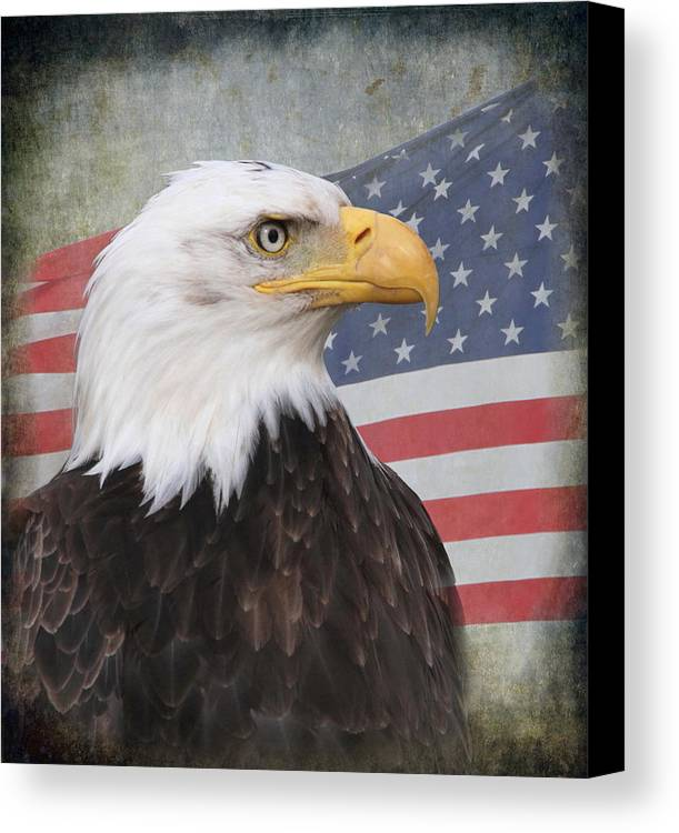 Eagle Canvas Print featuring the photograph American Pride by Angie Vogel