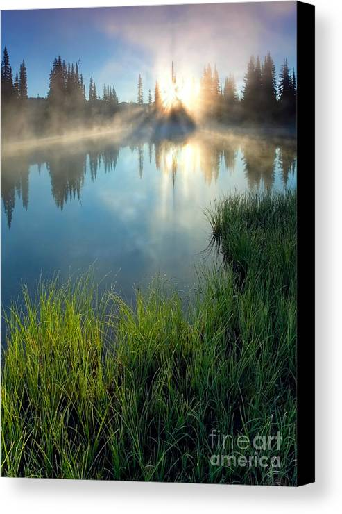 Fog Canvas Print featuring the photograph First Light by Mike Dawson