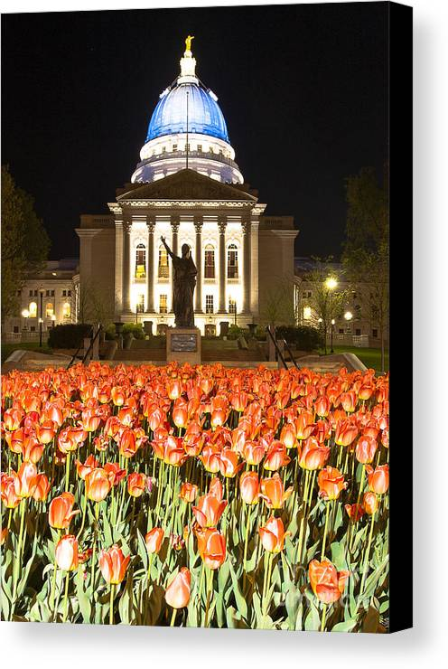 Blue Canvas Print featuring the photograph Red White And Blue by Steven Ralser
