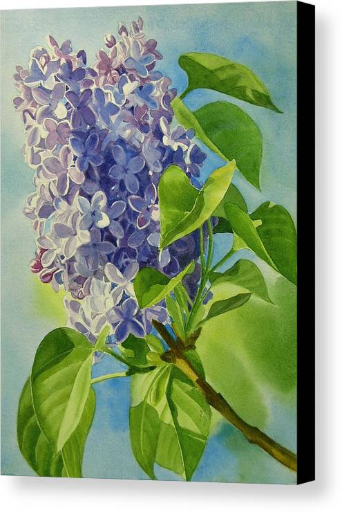 Lilac Canvas Print featuring the painting Blue And Lavender Lilacs by Sharon Freeman