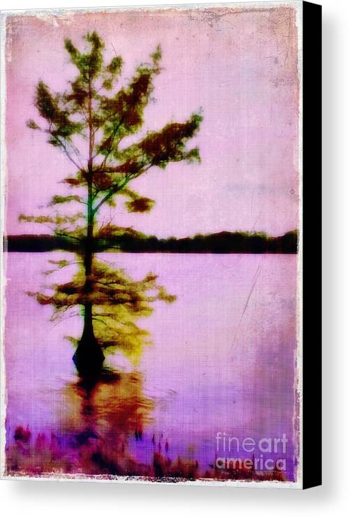 Louisiana Canvas Print featuring the photograph Lone Cypress by Judi Bagwell