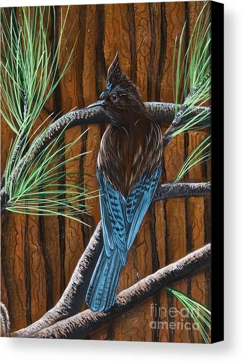 Bird Canvas Print featuring the painting Stellar Jay by Jennifer Lake