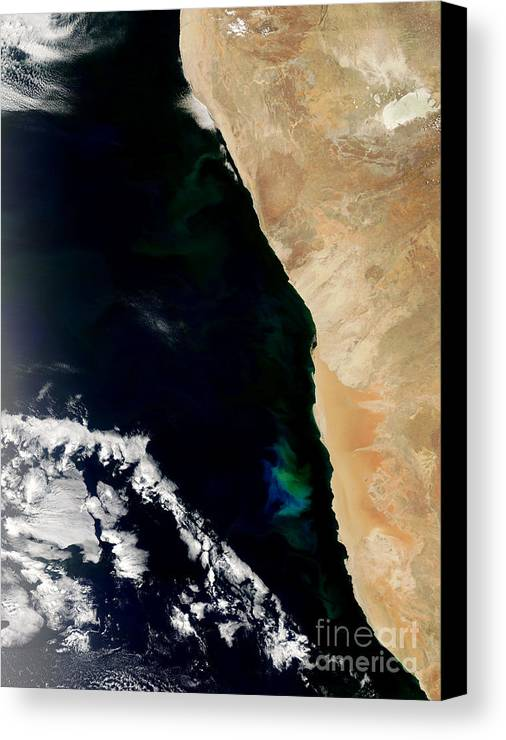 Phytoplankton Canvas Print featuring the photograph Phytoplankton Bloom Off Nambia by Nasa