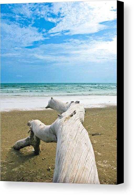 Beach Canvas Print featuring the photograph Blue Sea And Sky With Log On The Beach by Nawarat Namphon