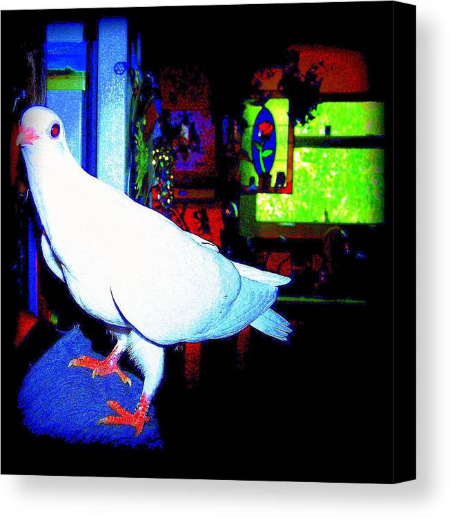 Pigeon Canvas Print featuring the mixed media Owl Pigeon by YoMamaBird Rhonda