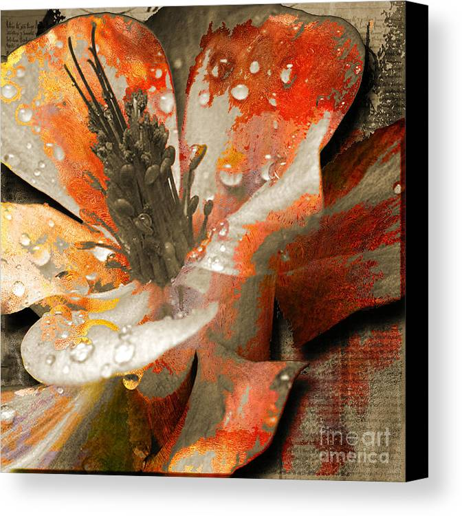 Canvas Print featuring the mixed media Seeds by Yanni Theodorou