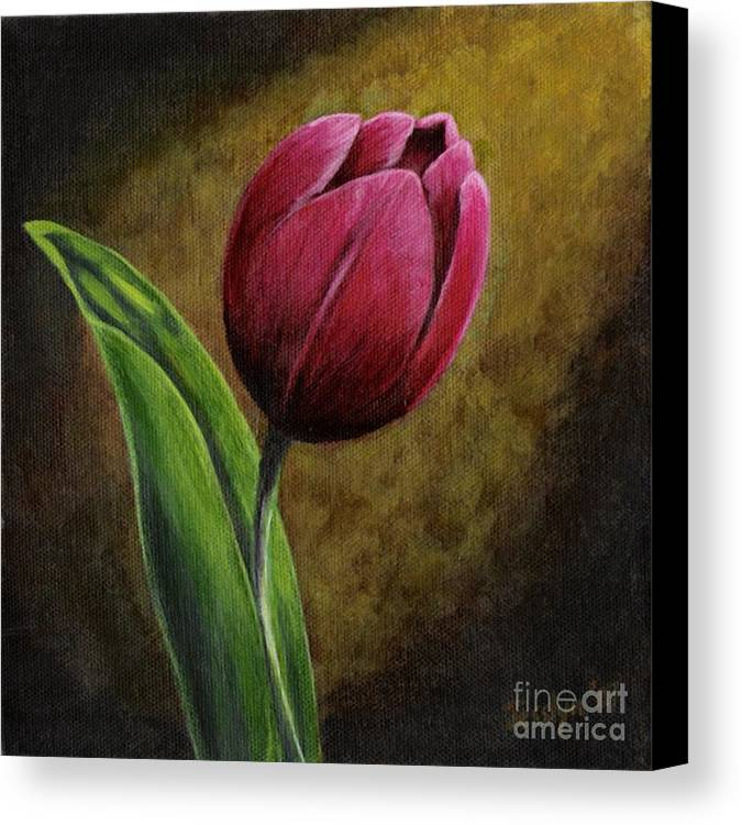 Flower Canvas Print featuring the painting Single Tulip by Jesslyn Fraser