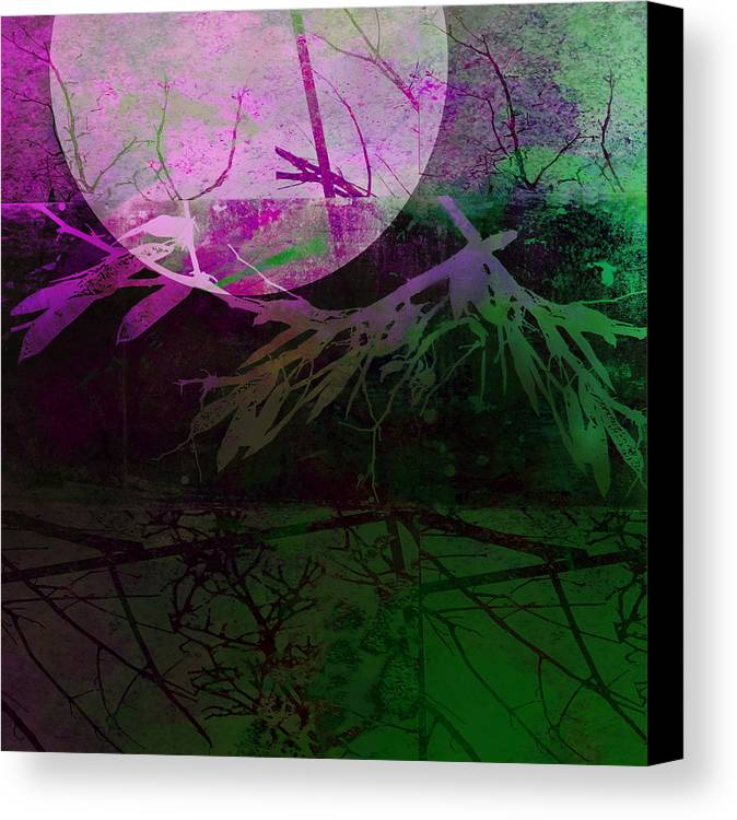 Moon Canvas Print featuring the photograph Purple Moon by Ann Powell