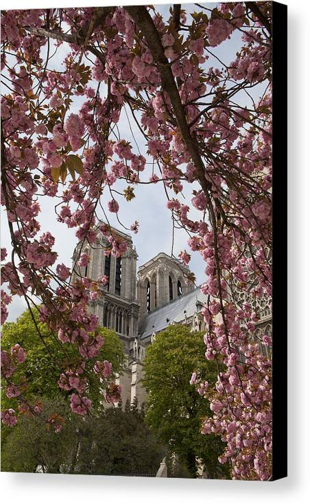 Paris Canvas Print featuring the photograph Notre Dame 1 by Art Ferrier