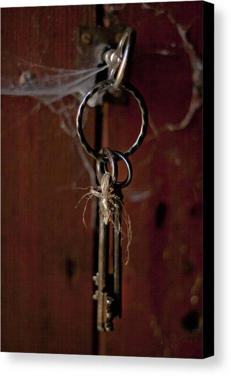 Abstract Canvas Print featuring the photograph Three Keys by Georgia Fowler