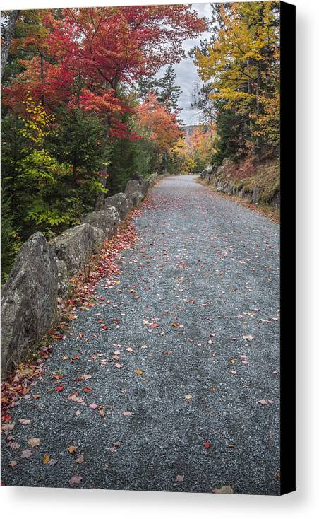 Maine Canvas Print featuring the photograph Walk Along by Jon Glaser