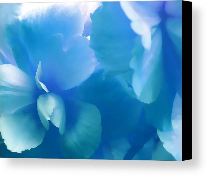 Begonia Canvas Print featuring the photograph Blue Melody Begonia Floral by Jennie Marie Schell