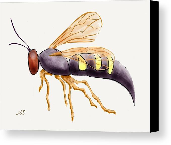 Wasp.insect Canvas Print featuring the digital art Cicada Killer Wasp by Stacy C Bottoms
