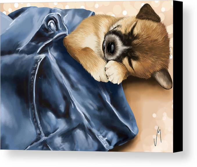 Dog Canvas Print featuring the painting Dreaming by Veronica Minozzi