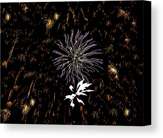 Fireworks Canvas Print featuring the photograph Lighting Up The Sky by Aimee L Maher Photography and Art Visit ALMGallerydotcom