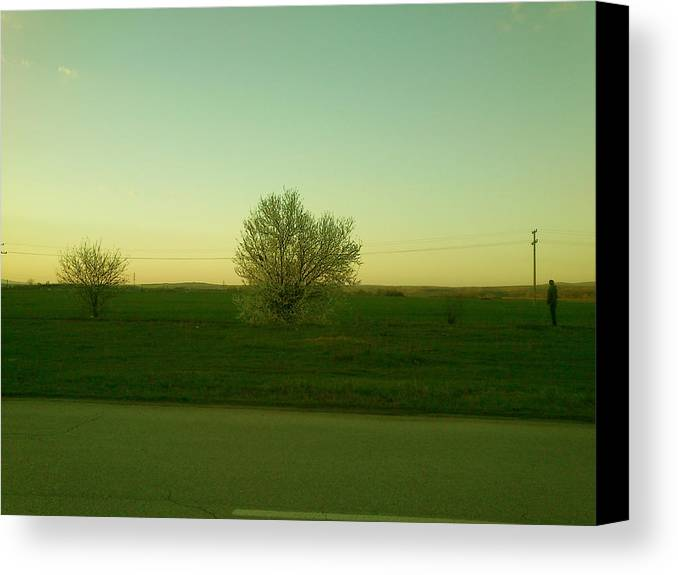 Tree Canvas Print featuring the photograph Man And Nature by Lucy D
