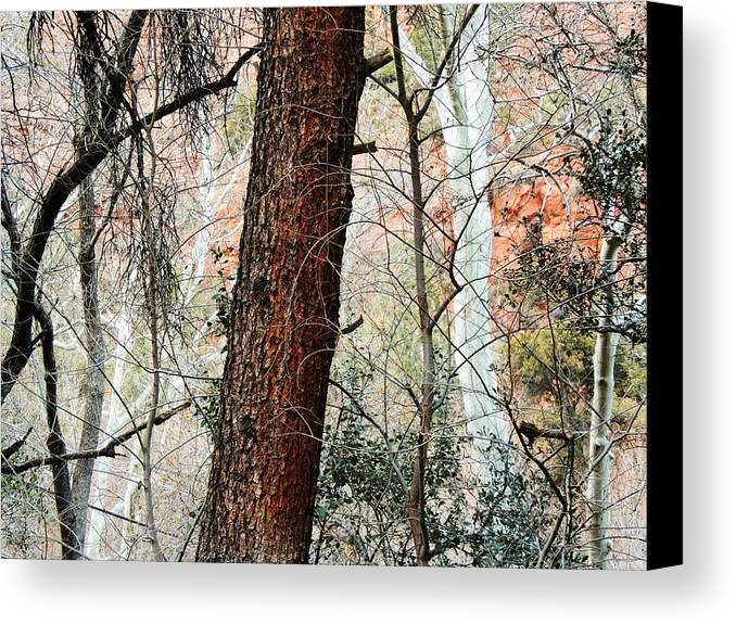 Red Canvas Print featuring the photograph Sedona Layers by Todd Sherlock