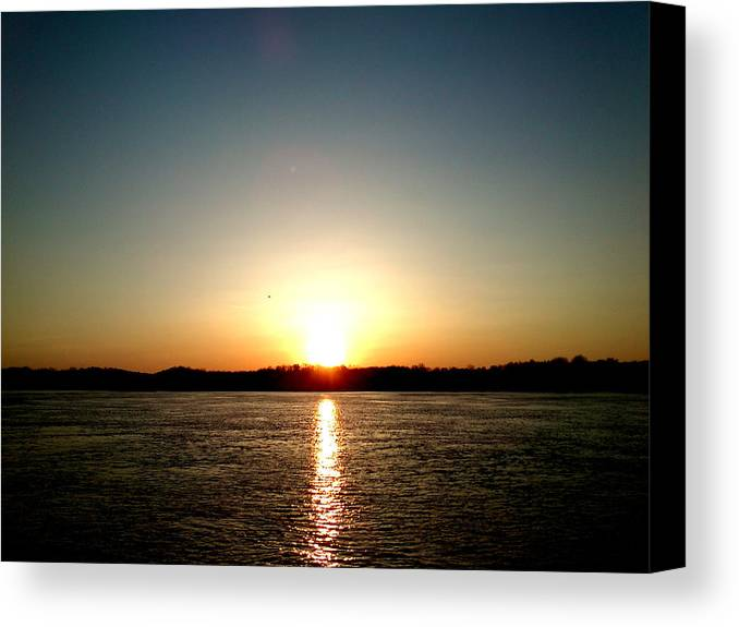 Sun Canvas Print featuring the photograph Sunset by Lucy D