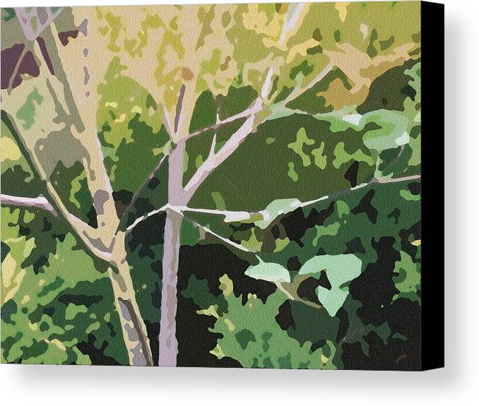 Dogwood Canvas Print featuring the photograph Dogwood I by Katharine Birkett