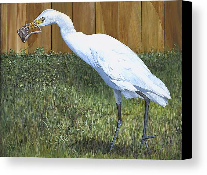 Cattle Egret Canvas Print featuring the painting Eye To Eye by AnnaJo Vahle