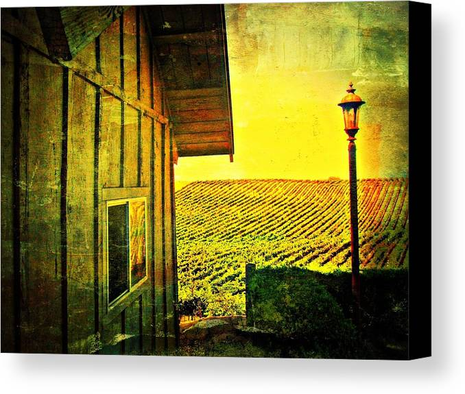 Wine Canvas Print featuring the photograph Vineyard Reflection by Kevin Moore
