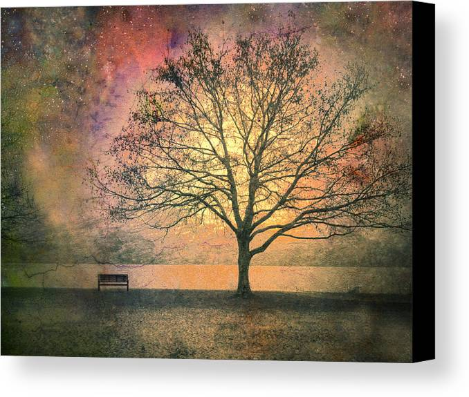Tree Canvas Print featuring the photograph And The Morning Is Perfect In All Her Measured Wrinkles by Tara Turner