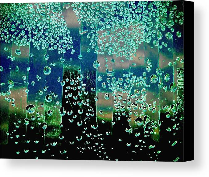 Abstract Canvas Print featuring the photograph Drops Of Rain by Shirley Sirois