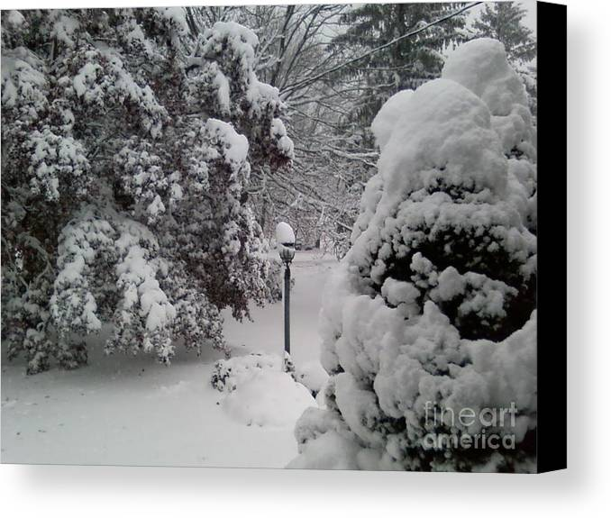 First Snow Canvas Print featuring the photograph Looking Out My Front Door by Carol Wisniewski