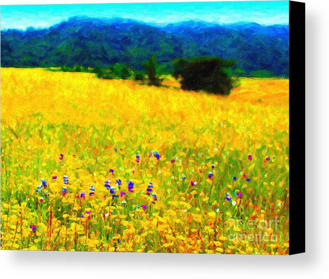 Landscape Canvas Print featuring the photograph Yellow Hills by Wingsdomain Art and Photography