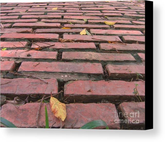 Old Canvas Print featuring the photograph Old Red Brick Road by Yali Shi