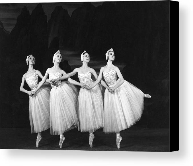 Mid Adult Canvas Print featuring the photograph Swan Lake by Baron