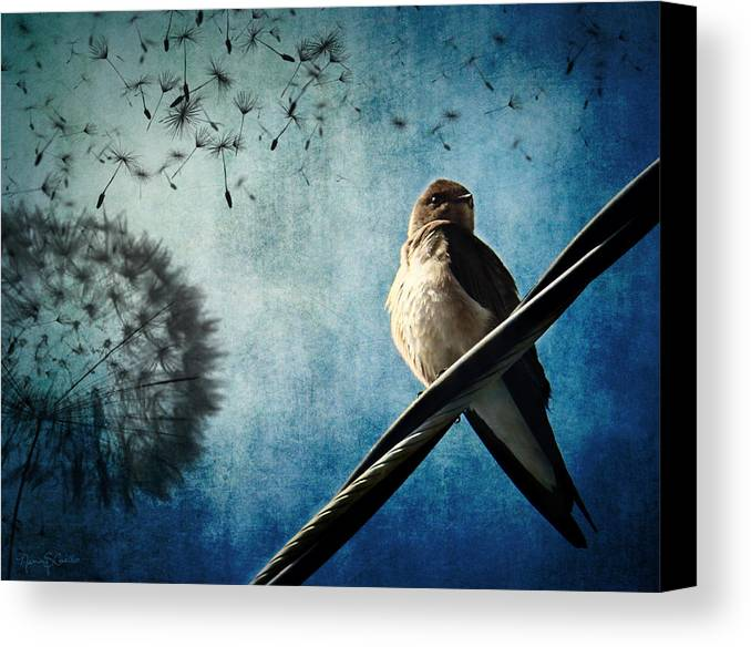Swallow Canvas Print featuring the photograph Wishing Swallow by Nancy Coelho