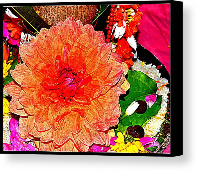 Flowers Flowers And Flowers Canvas Print featuring the photograph Flowers Flowers And Flowers by Anand Swaroop Manchiraju