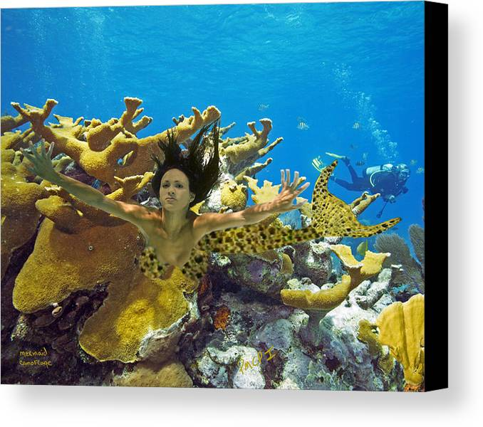 Mermaid Canvas Print featuring the photograph Mermaid Camoflauge by Paula Porterfield-Izzo