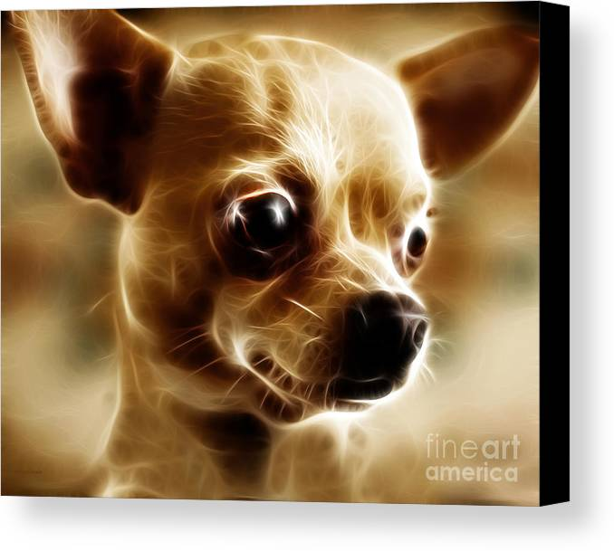 Animal Canvas Print featuring the photograph Chihuahua Dog - Electric by Wingsdomain Art and Photography