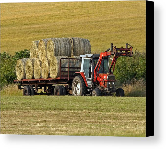 Hay Canvas Print featuring the photograph Make Hay When Sun Shines by Paul Scoullar