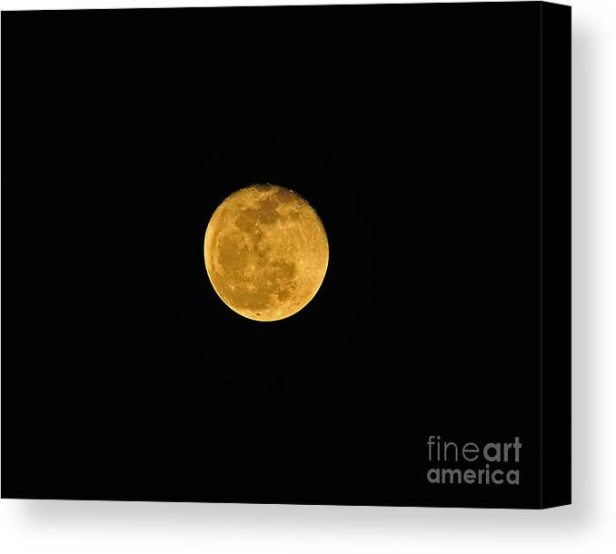 Moon Canvas Print featuring the photograph Waning Passover Moon by Al Powell Photography USA