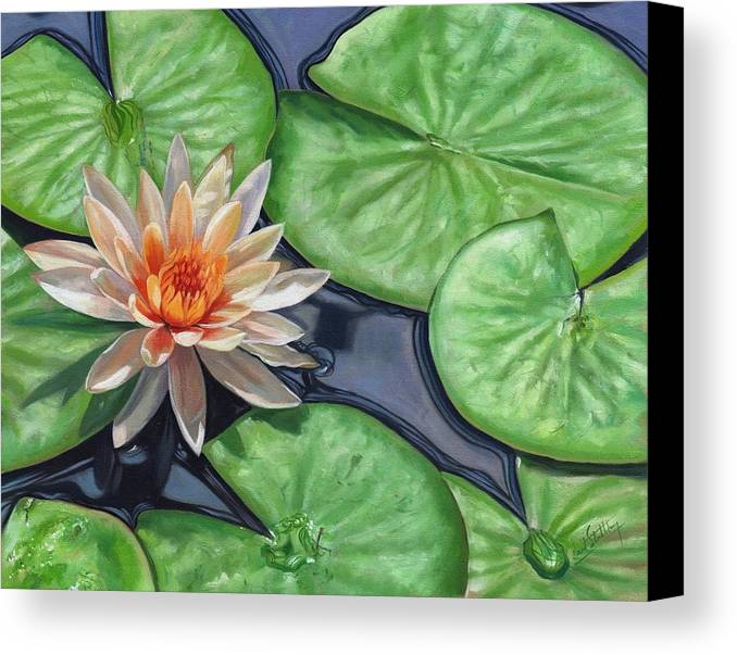 Lily Canvas Print featuring the painting Water Lily by David Stribbling